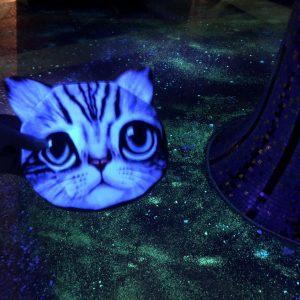 一万トンバース猫